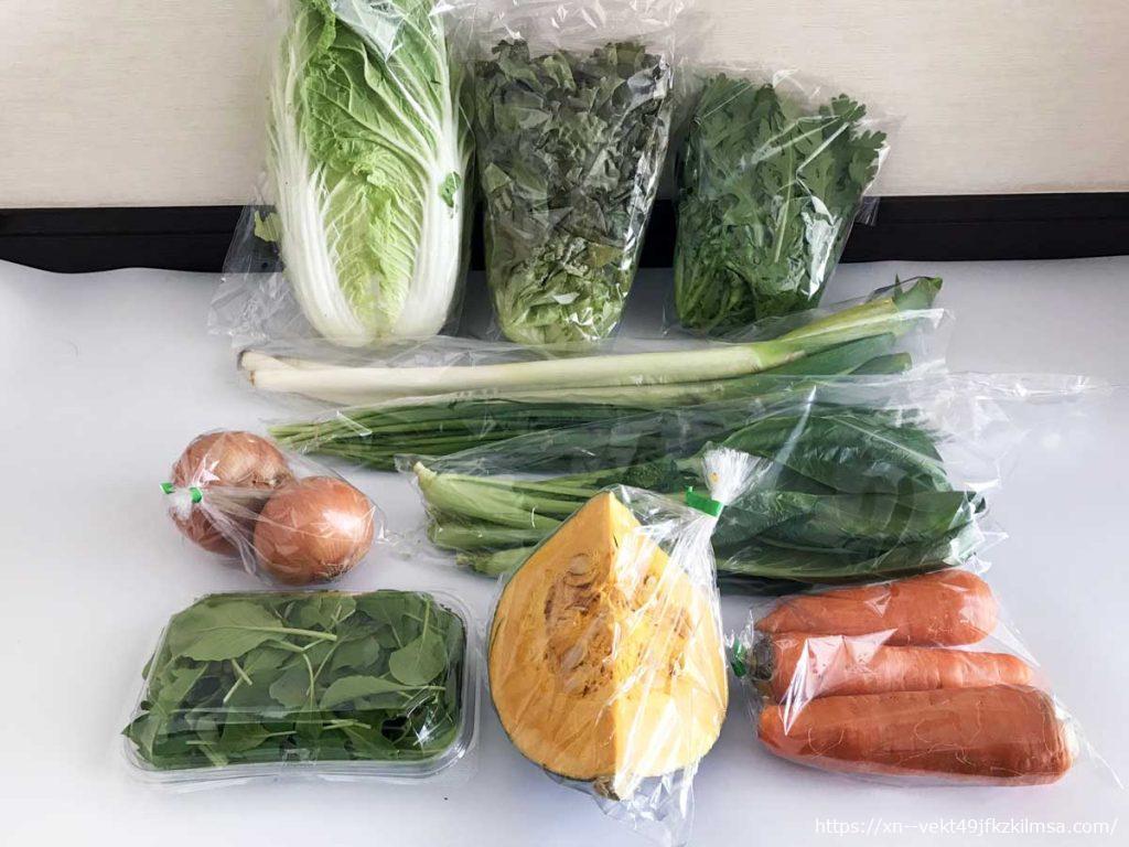 ビオマルシェお試し野菜セット