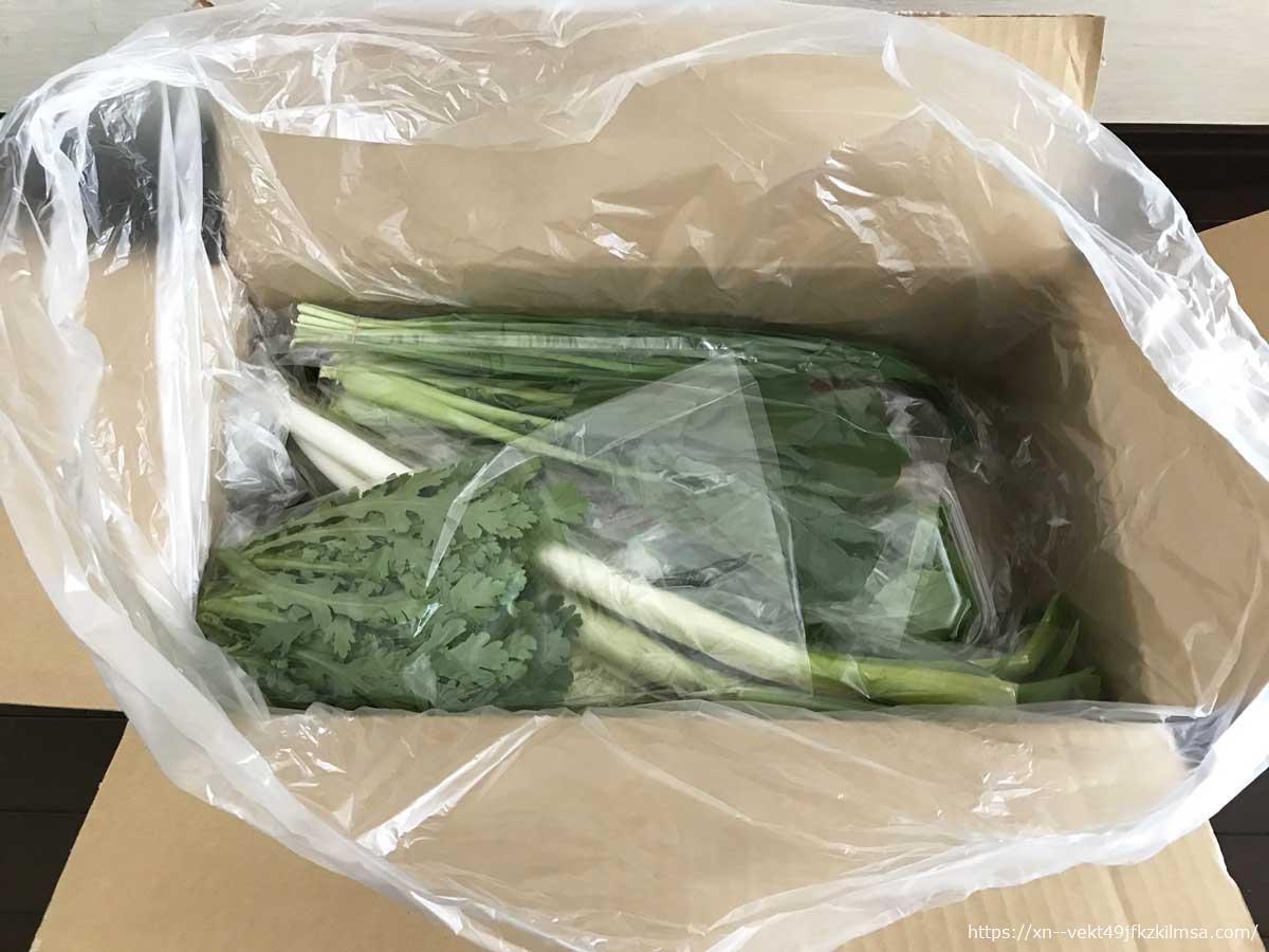 ビオマルシェのお試し野菜セット