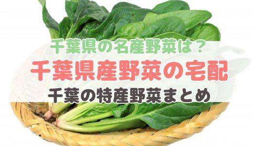 千葉県産の野菜が買える宅配サービス【千葉県の特産野菜】