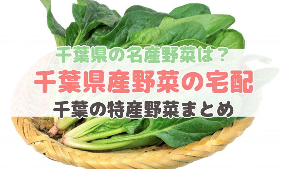 千葉県産野菜