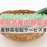 福岡県産野菜宅配