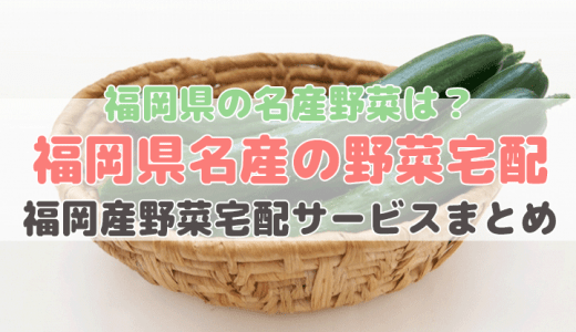 福岡県産の野菜が買える宅配サービス【福岡県産の特産野菜】
