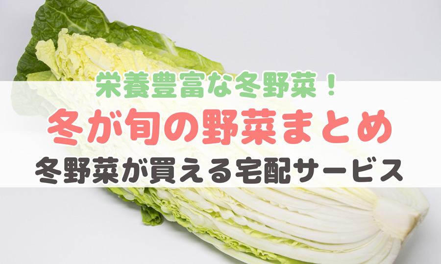 栄養豊富な冬野菜!冬が旬の野菜まとめ