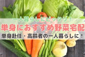 一人暮らし野菜宅配