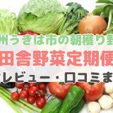 田舎野菜定期便の体験レビュー
