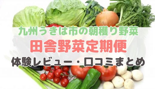 田舎野菜定期便のセット内容・価格・口コミ【感想まとめ】