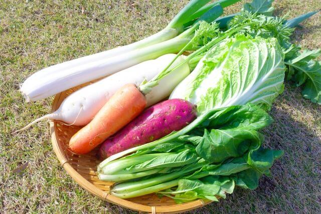 冬が旬の無農薬野菜