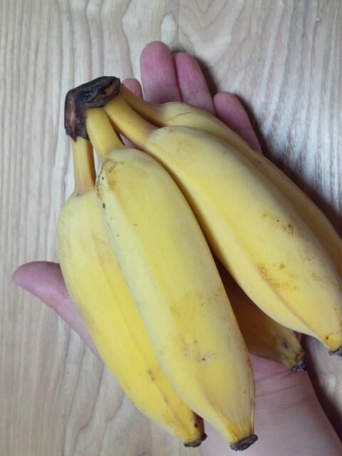 パナップル