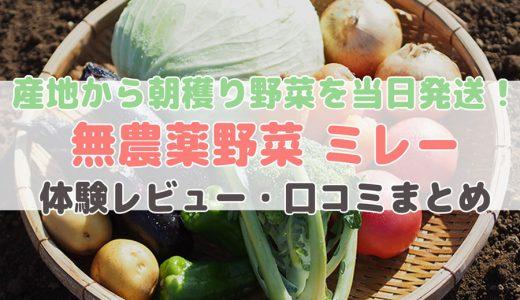 ミレーの野菜セット内容・価格・口コミは?