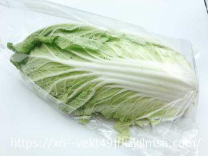 ビオマルシェ お試し野菜 多菜セットA 白菜