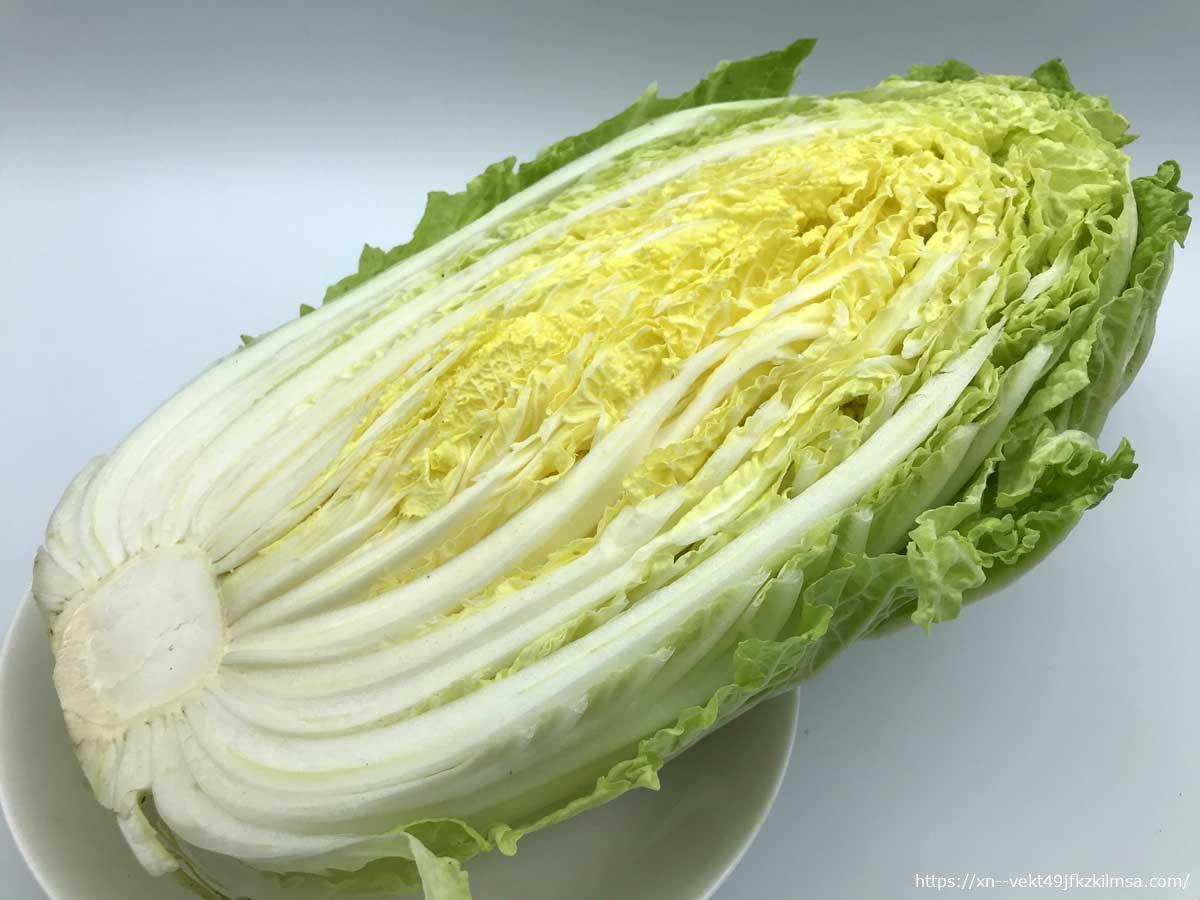 ビオマルシェ お試し多菜セットA 白菜